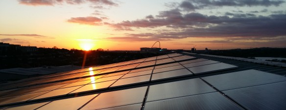 Skyline solar case studies: Rustins